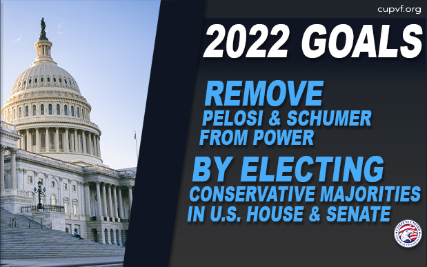 2022 Goals - Remove Pelosi and Schumer